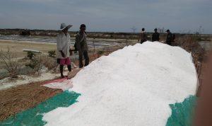 Musim kemarau, produksi garam meningkat drastis di Takalar (Foto: Jaya/zonatimes.com)